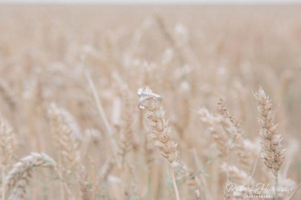 Corn_Wedding_Rings